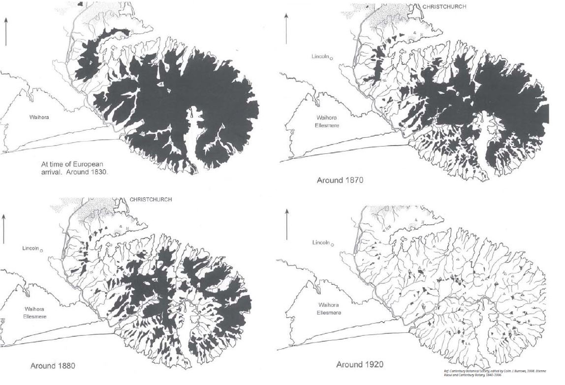 Figure 6. Deforestation of Banks Peninsula. Image: Boffa Miskell 2007: 27.